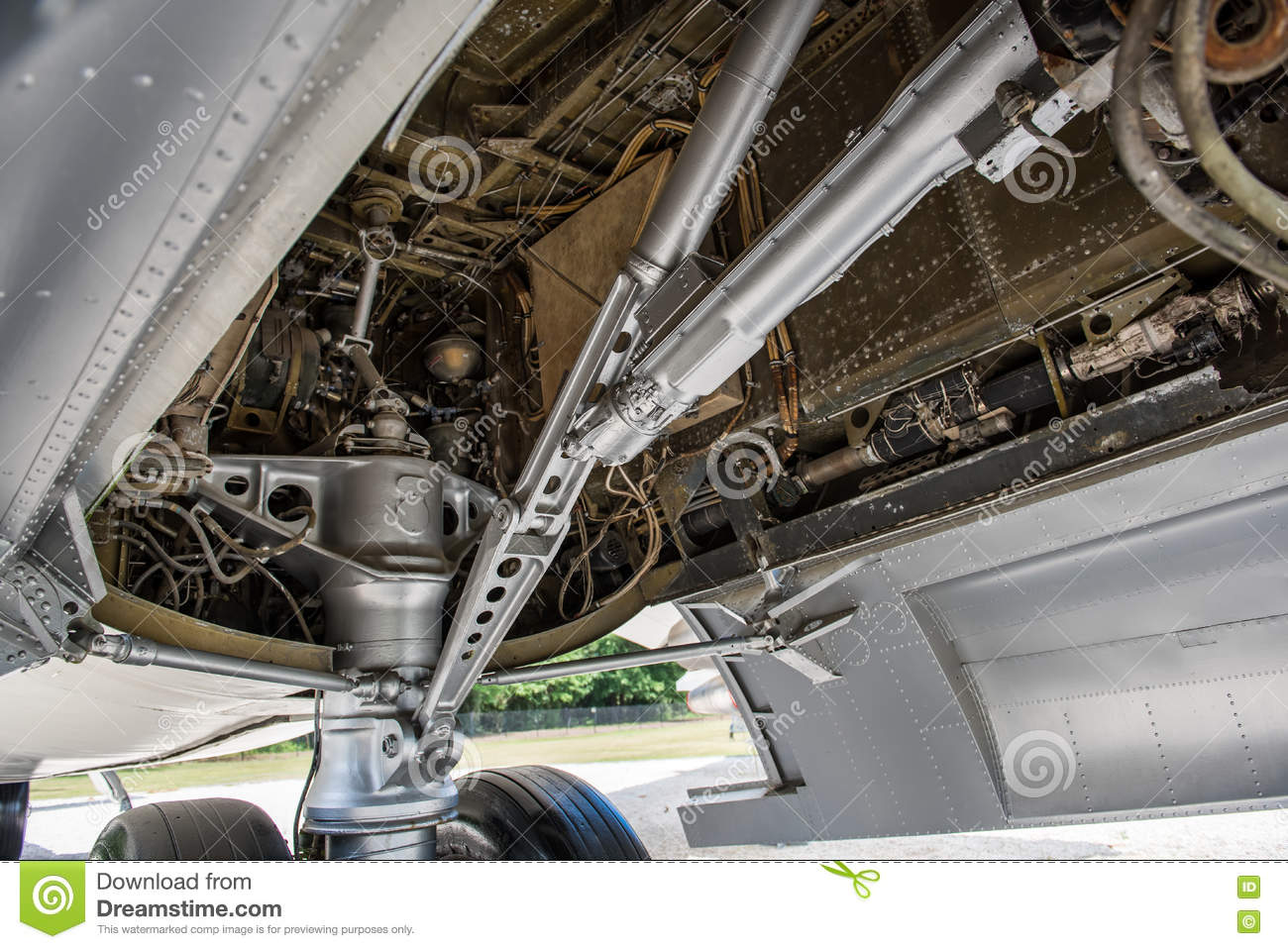 Inside the Landing Gear Compartment