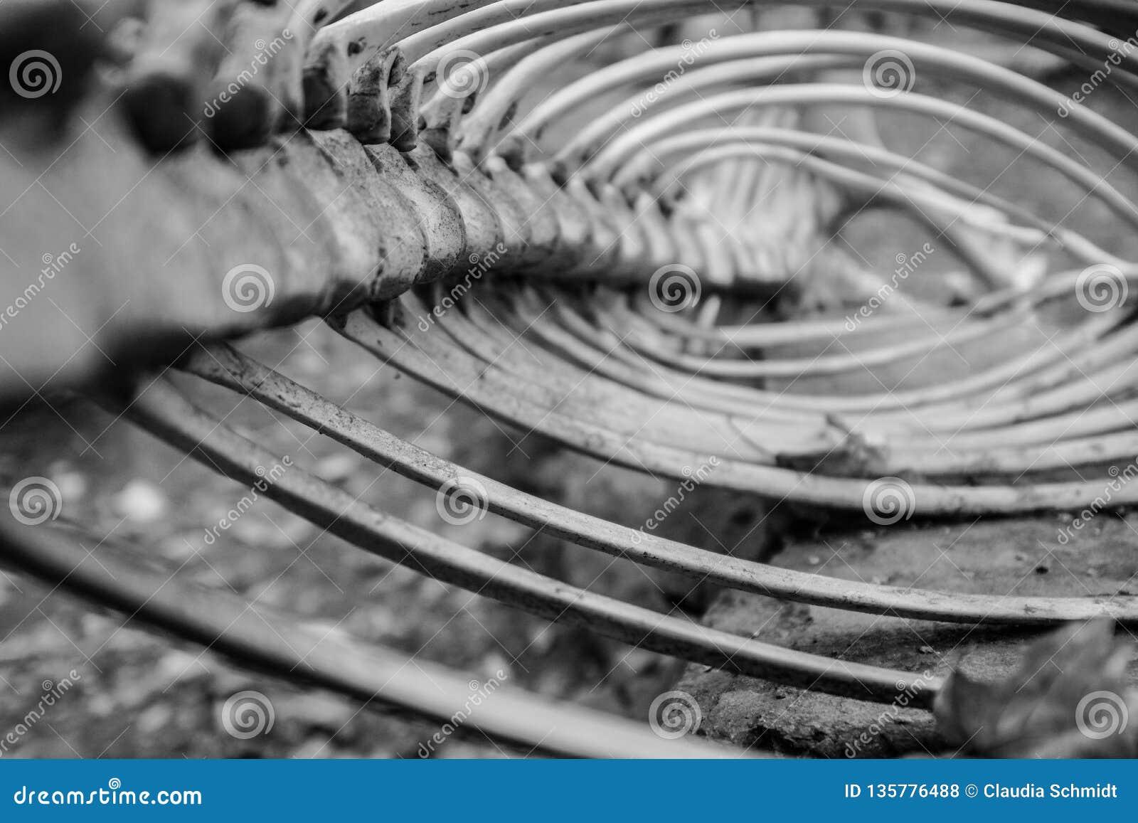 Backbone Stock Photography | CartoonDealer.com #6041810