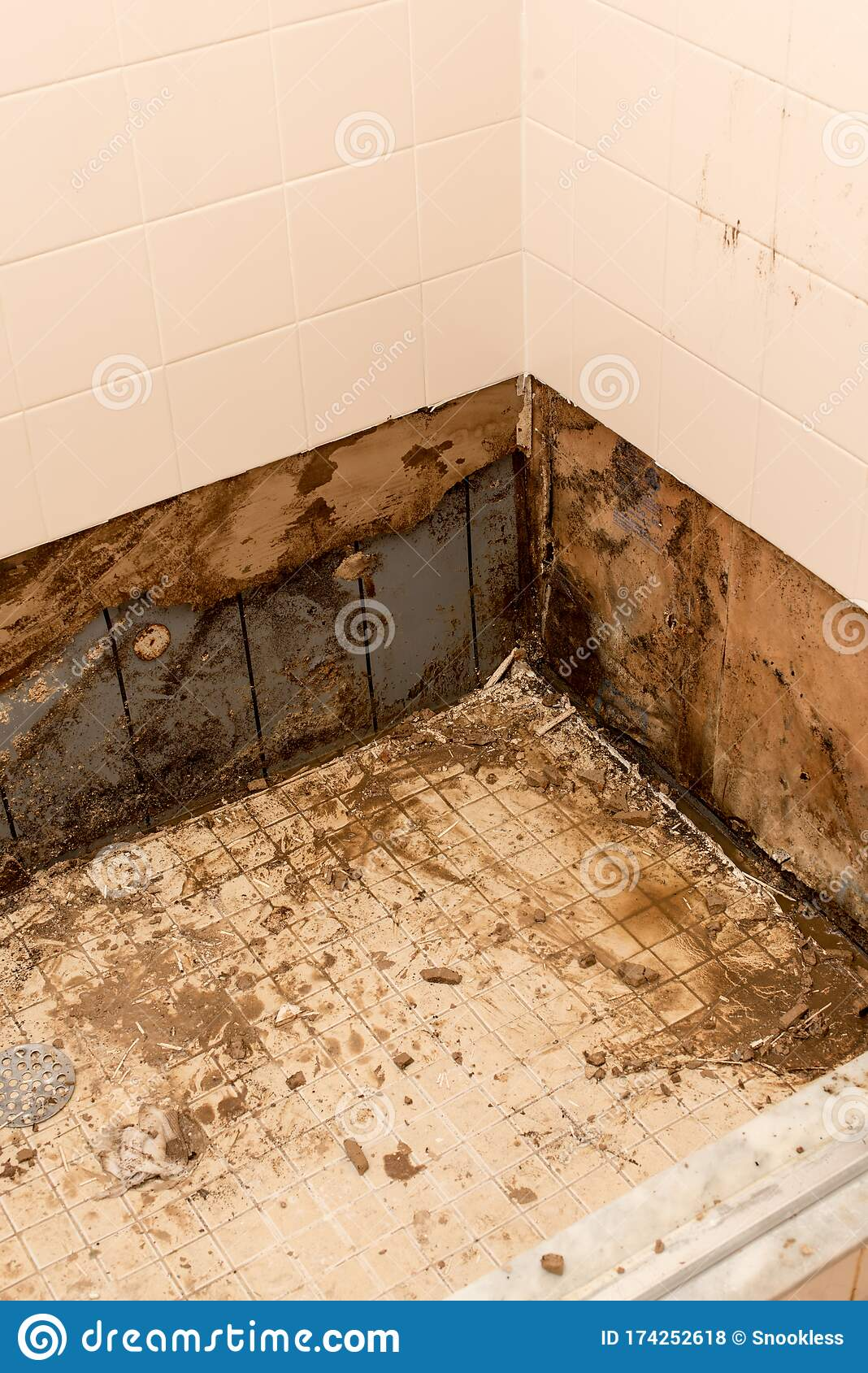 Shower Pan Damage Or Repair Stock Photo Image Of Pipes Care 174252618