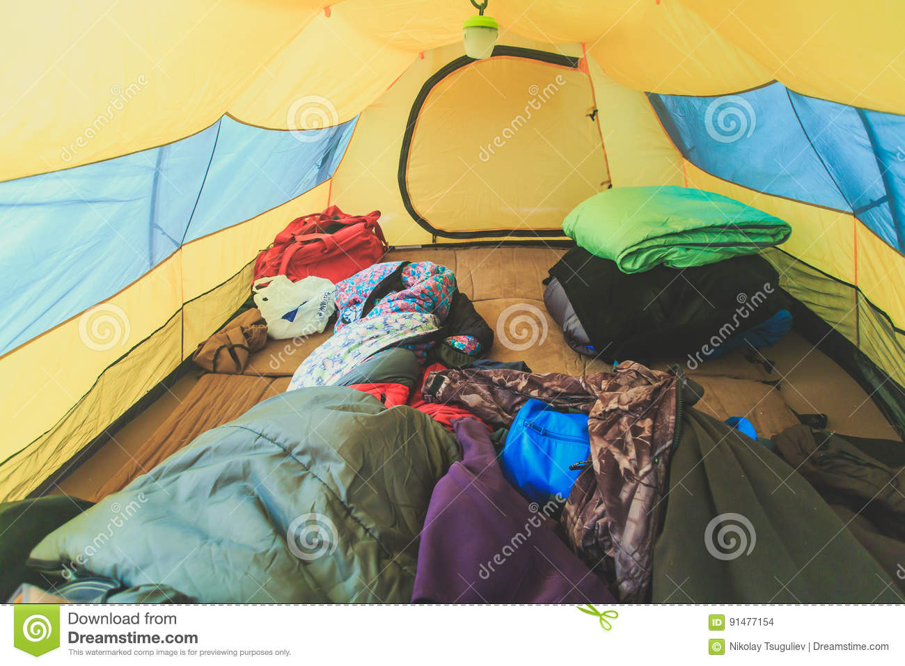 An inside view of tent, process of camping in fall or spring forest field, setting a tent covered
