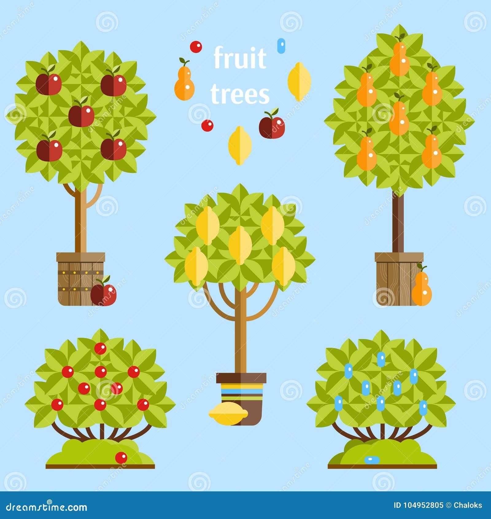 Foto Di Alberi Da Frutto insieme degli alberi da frutto illustrazione piana di