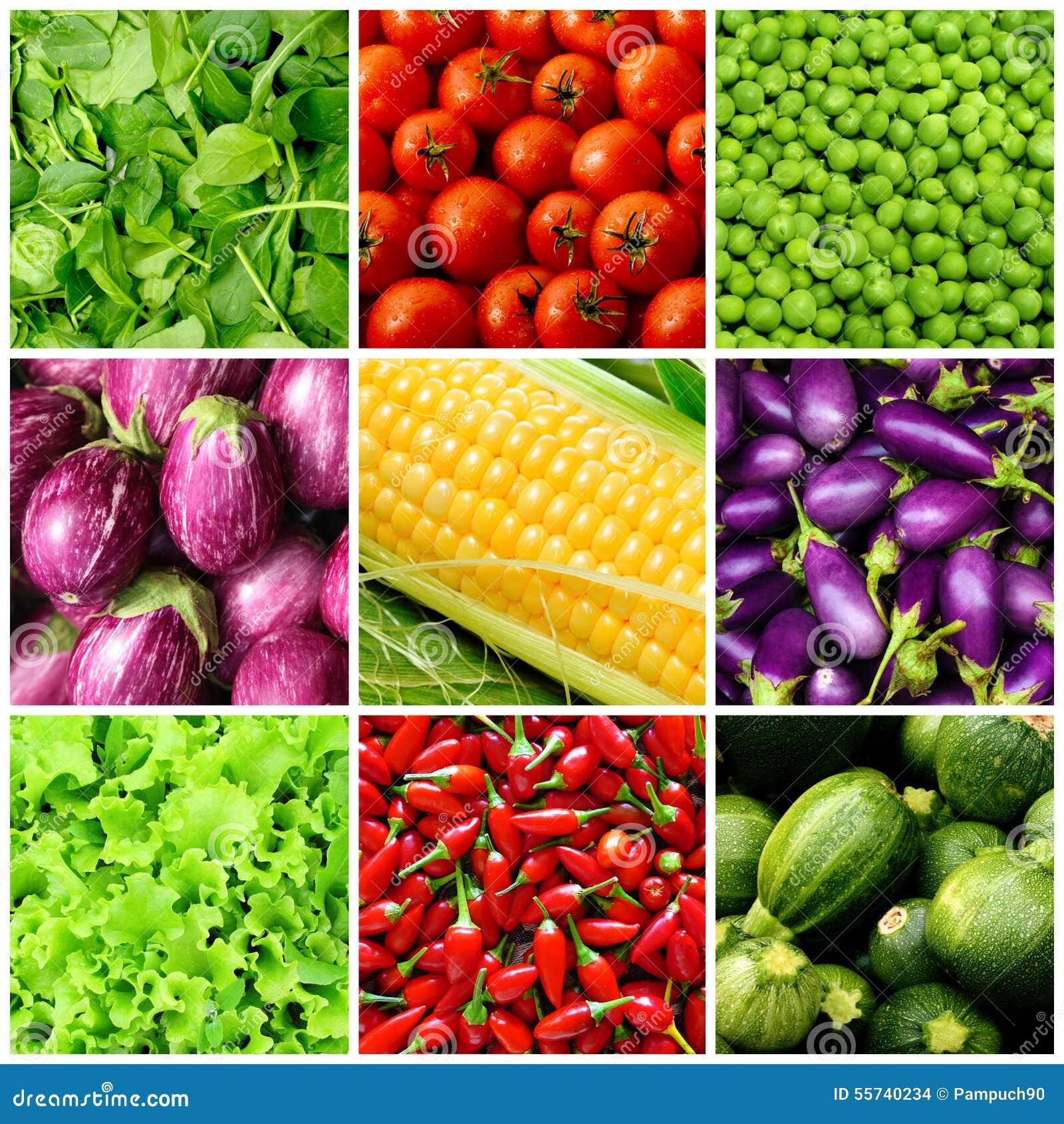 Insieme degli ambiti di provenienza di verdure
