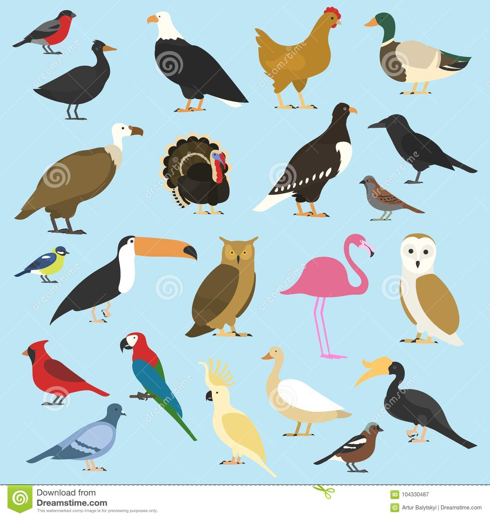 Insieme degli uccelli domestici e degli animali tropicali avvoltoi, pappagallo di cacatua bucero del rinoceronte, tucano di toco