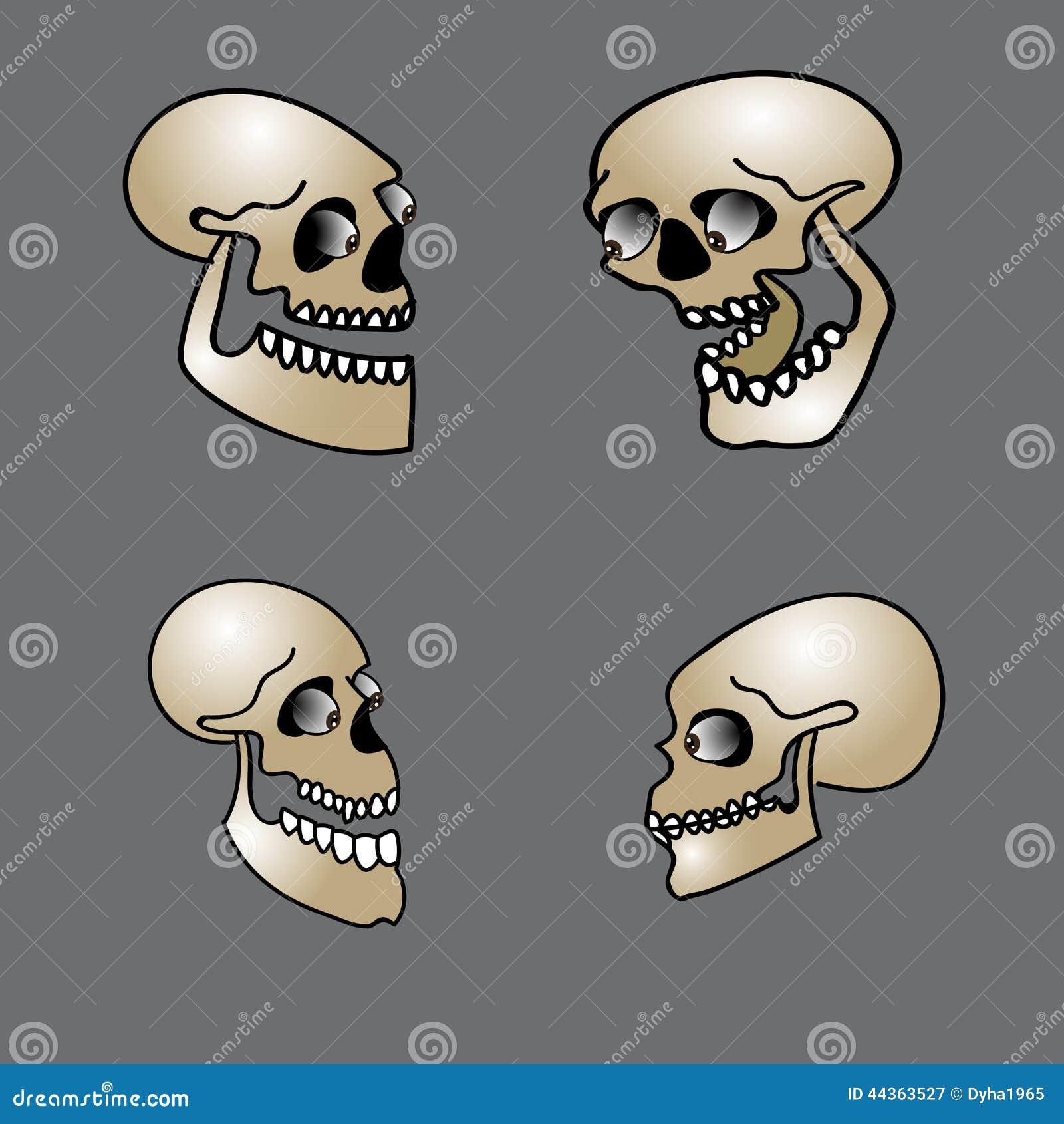 Insieme del cranio di Halloween