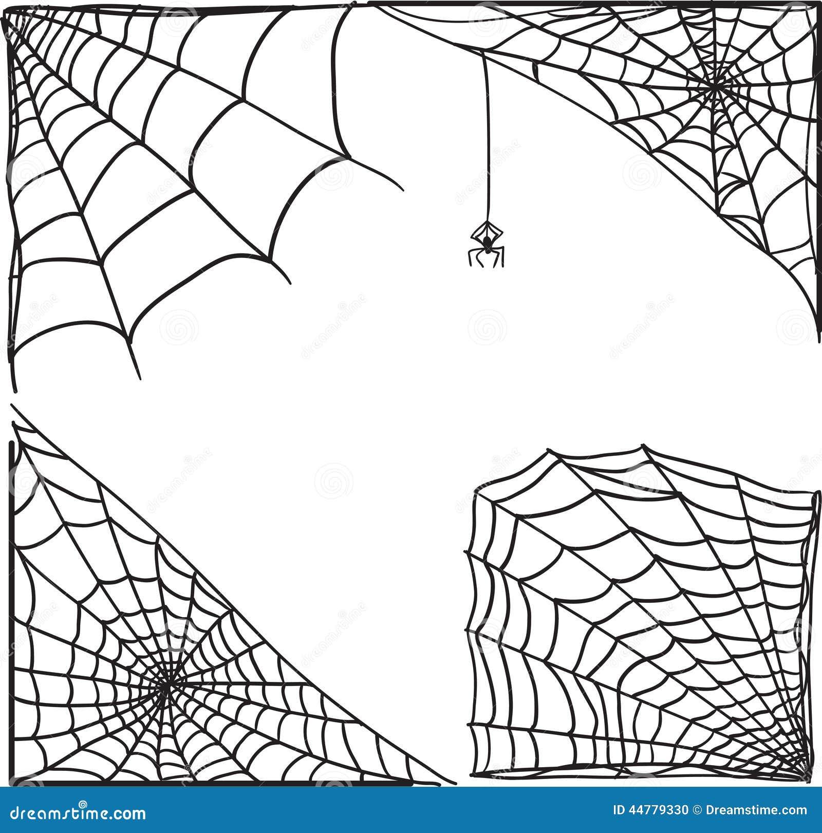 Insieme dell angolo della ragnatela