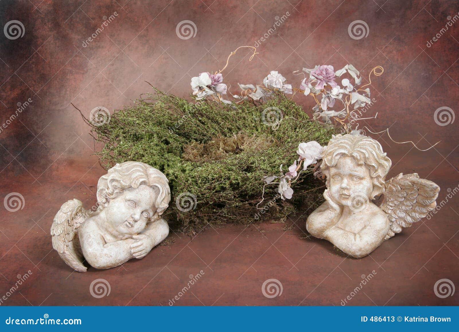 Insieme dello studio di fantasia del nido dell uccello di bambino (cliente isolato inserto)