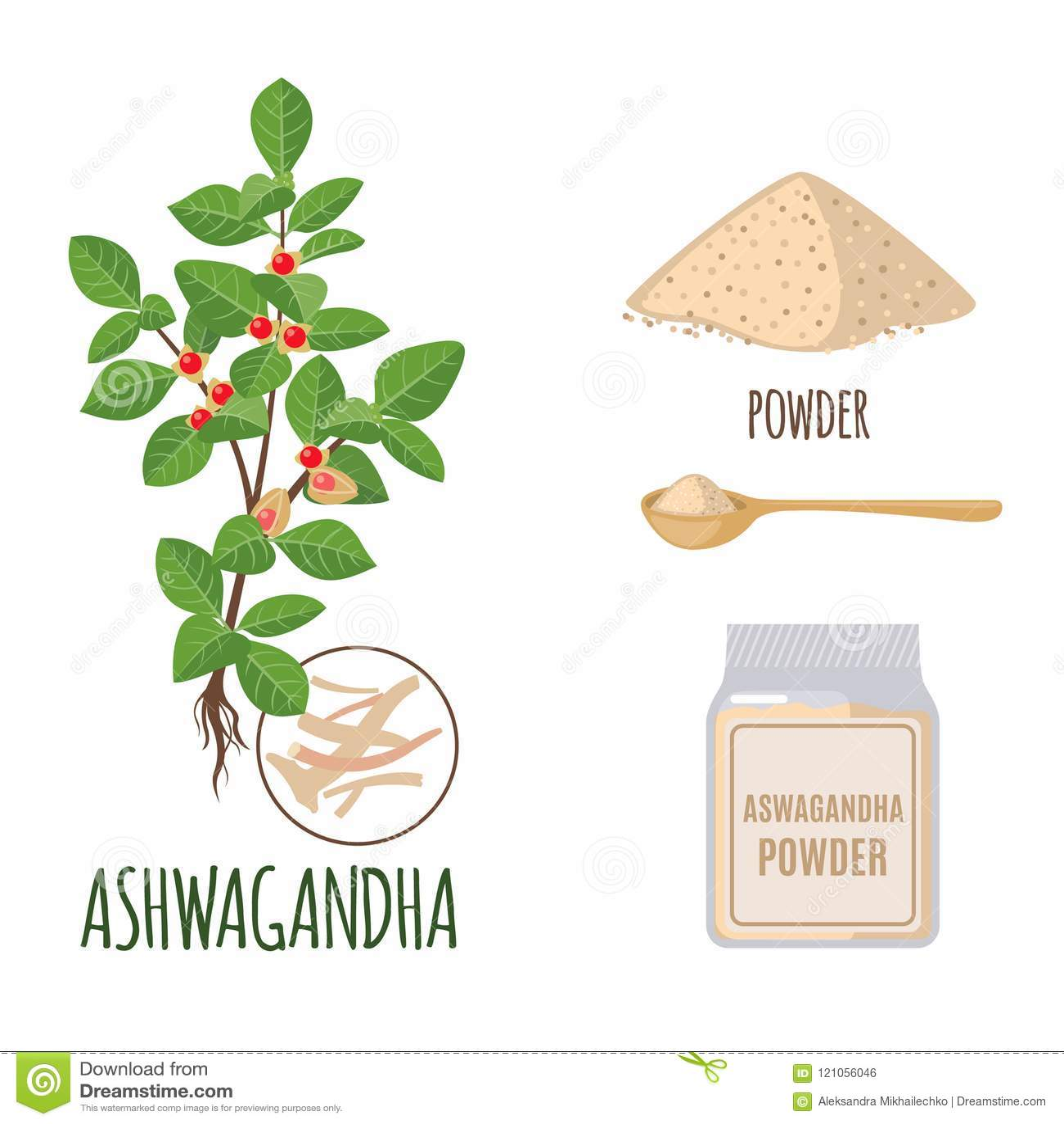 Insieme di Ashwagandha con polvere e radici nello stile piano isolate su bianco
