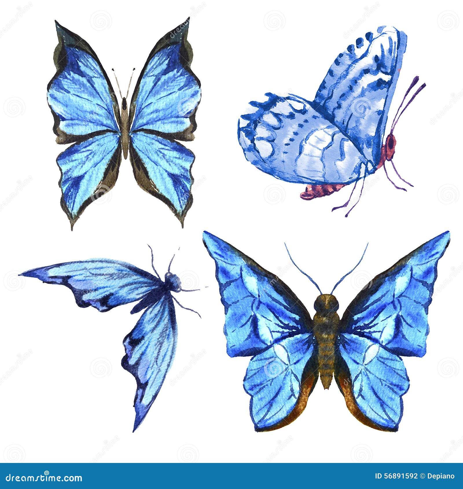 Insieme di bello acquerello variopinto blu di estate