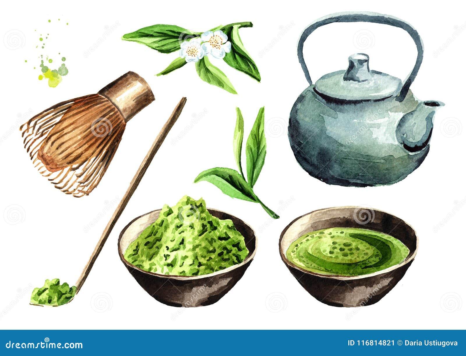 Insieme di cerimonia di tè La polvere di Matcha, la teiera, tazza del matcha verde organico tradizionale, bambù sbatte, cucchiaio