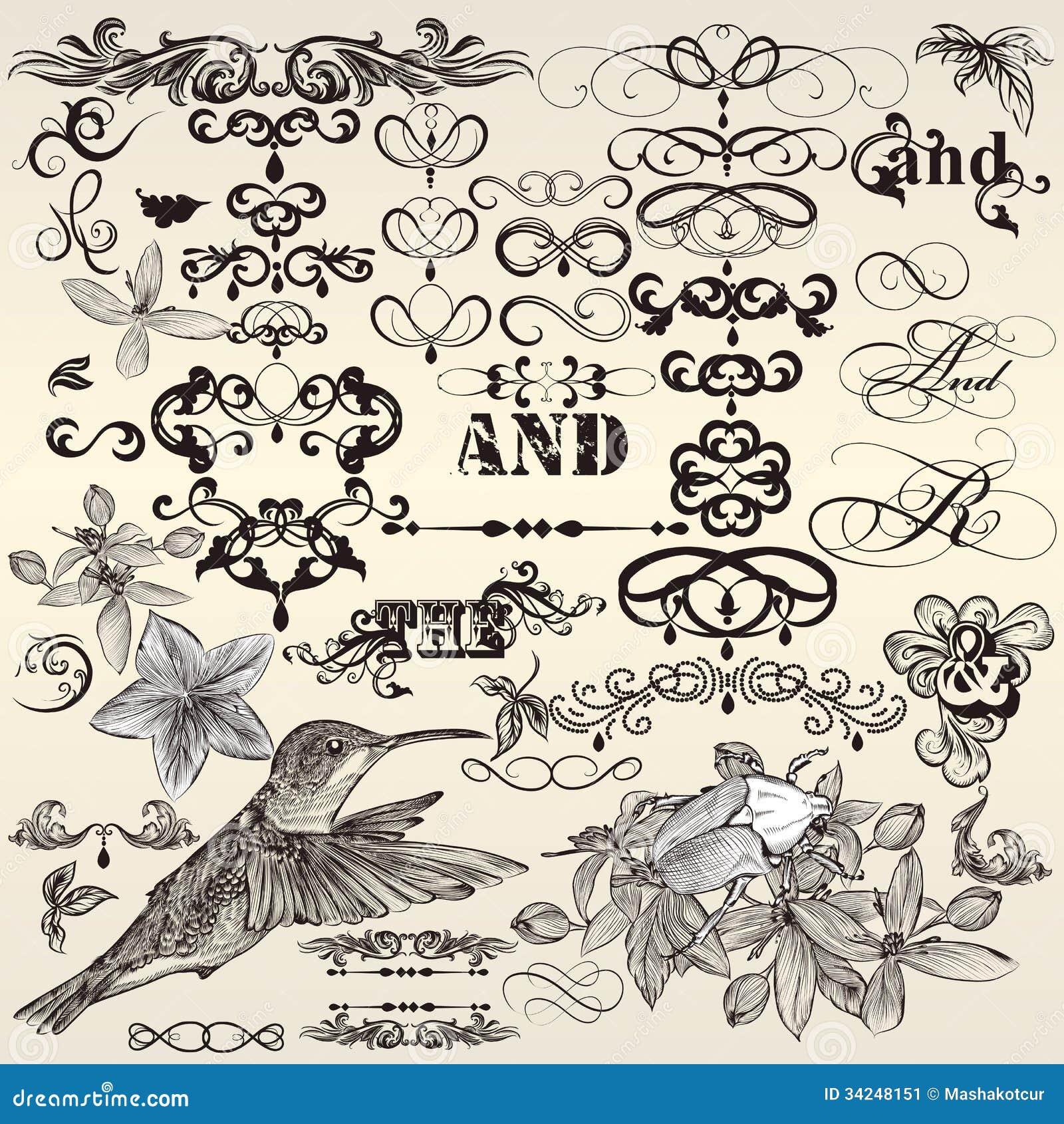 Insieme di vettore degli elementi di progettazione e del deco d annata calligrafici della pagina