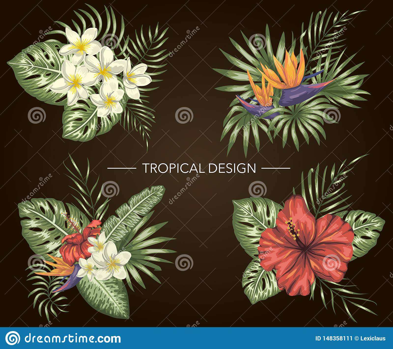 Insieme di vettore delle composizioni tropicali con gli ibischi, plumeria, fiori di strelizia, monstera