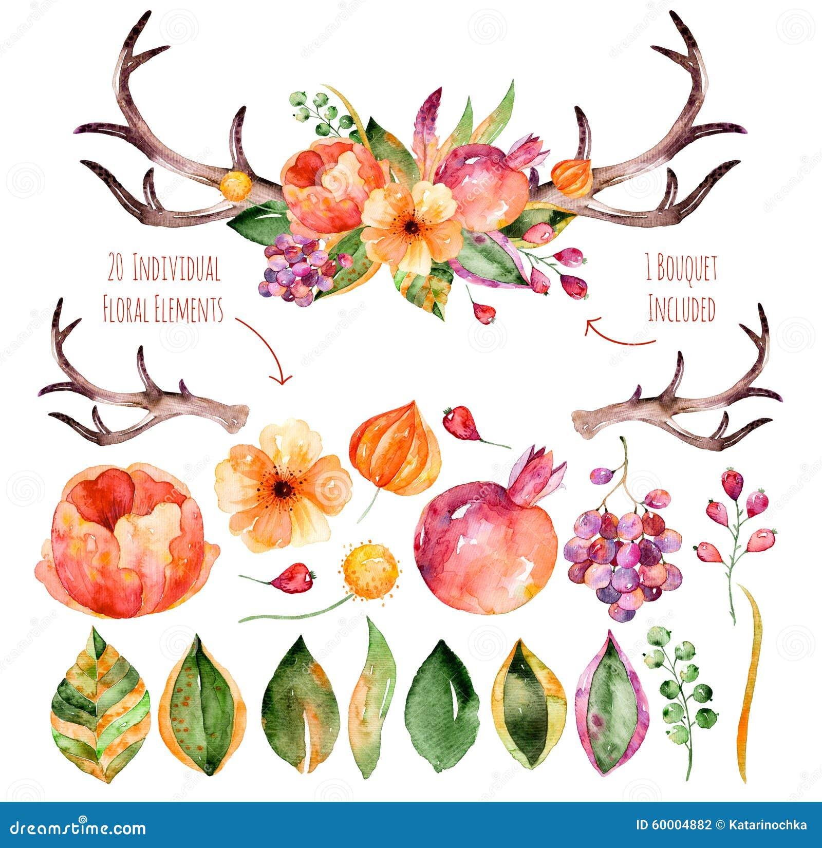 Insieme floreale di vettore Raccolta floreale porpora variopinta con le foglie, i corni ed i fiori, mazzo floreale di disegno di
