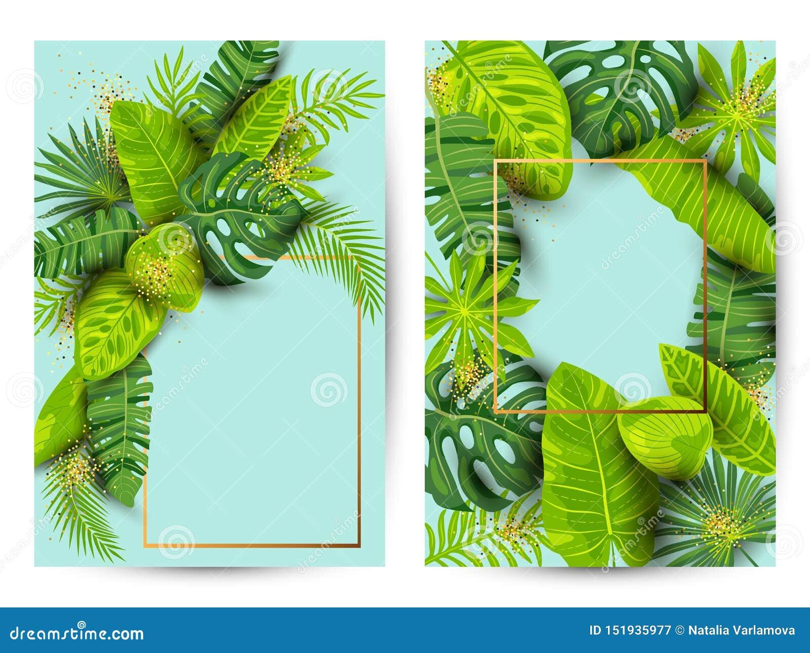Insieme tropicale del fondo di estate verde con le foglie esotiche