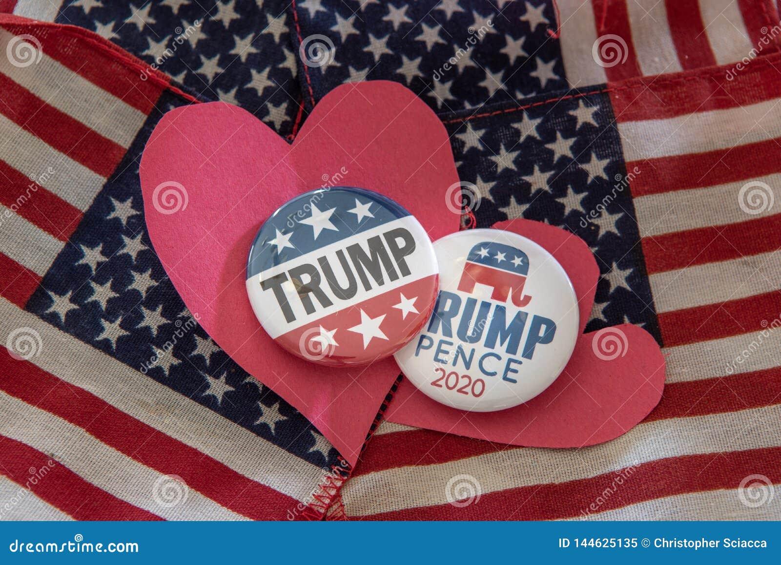 Insignias de campaña presidencial del triunfo 2020 contra bandera indicada unida
