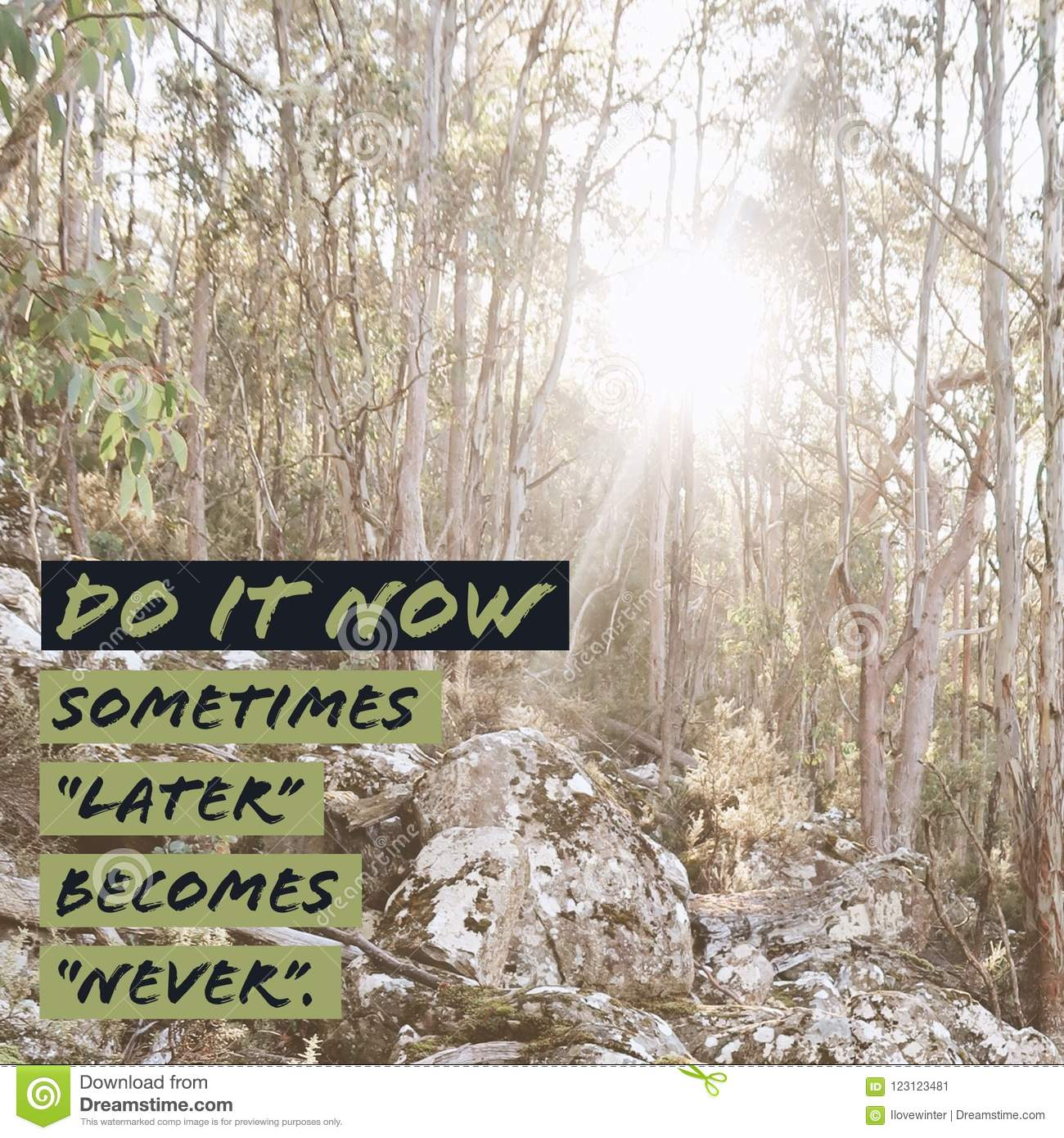 Inspirational motivational quote `Do it now. Sometimes later becomes never.`