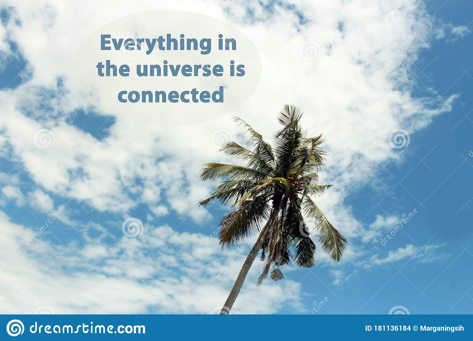 Inspirational Quote Everything In The Universe Is Connected With Single Palm Tree On Bright Blue Sky Cloud Background Stock Photo Image Of Connected Holiday 181136184
