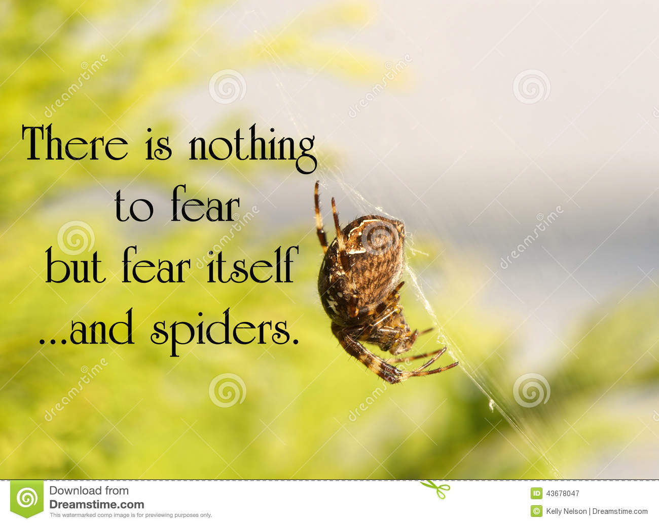 Inspirational Quote Stock Image Image Of Environment 43678047