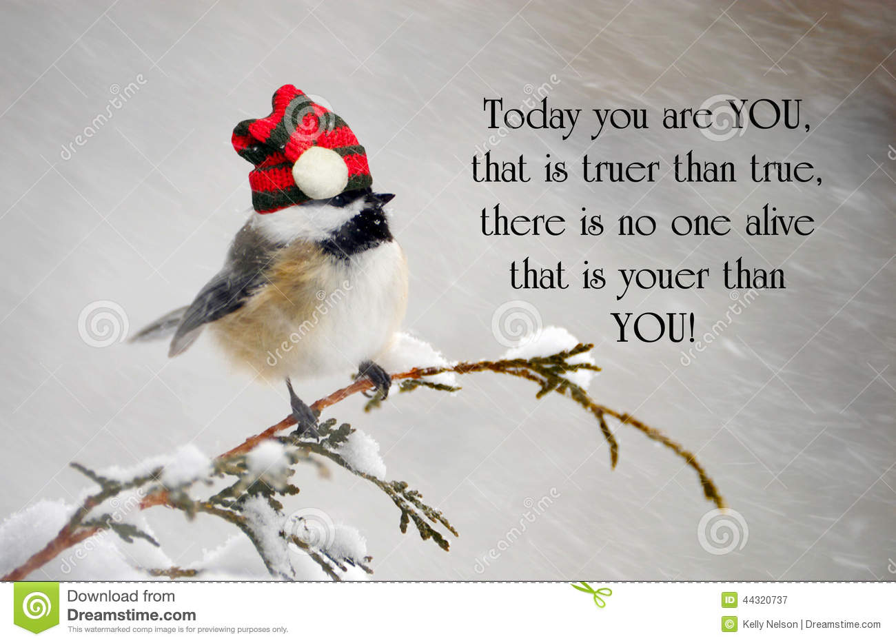 Cute Inspirational Quotes Inspirational Quote Stock Imageimage Of Bird Coaching  44320737