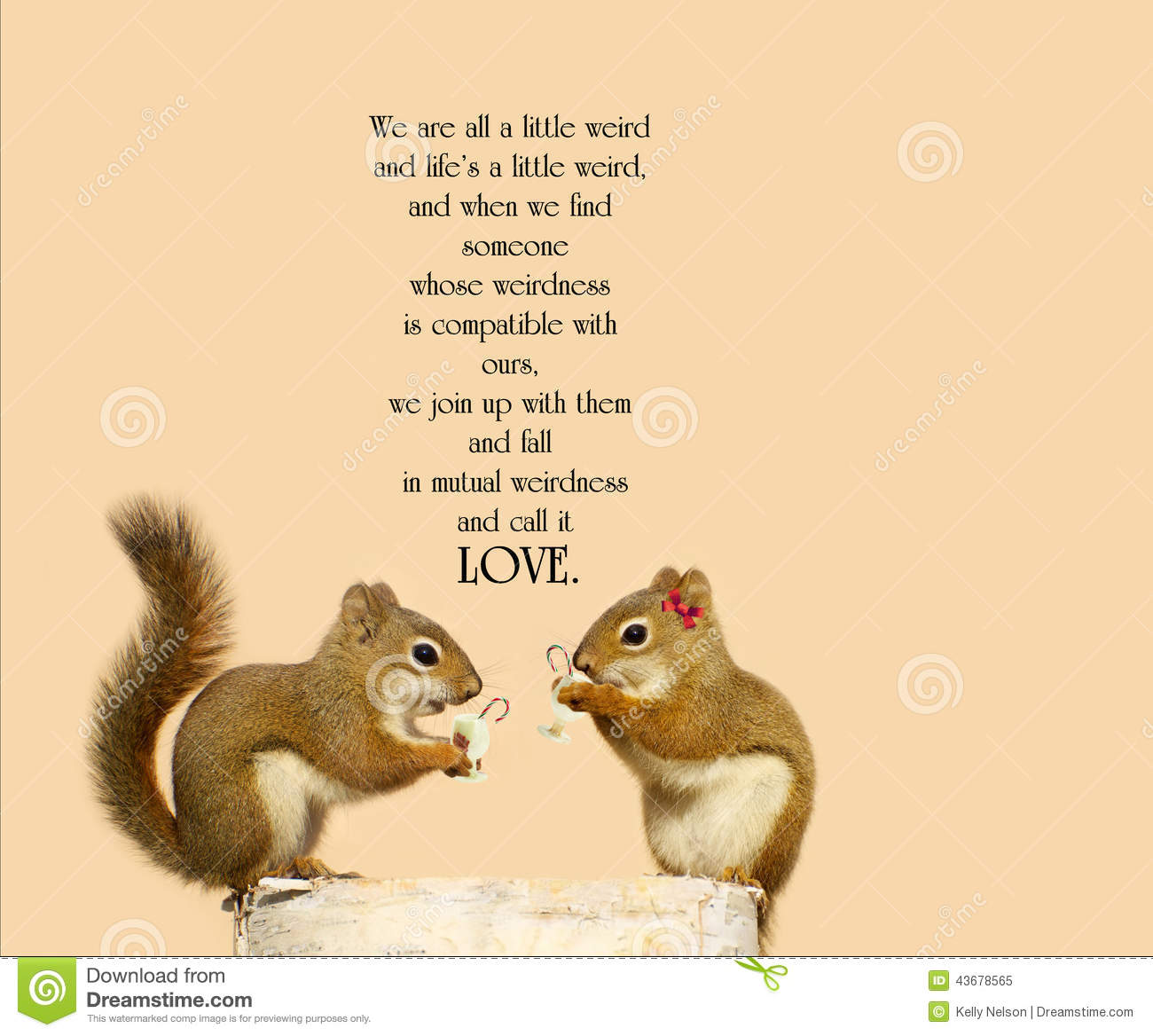 Dr Seuss Weird Love Quote Poster Inspirational Quote Stock Imageimage Of Birch Candy  43678565