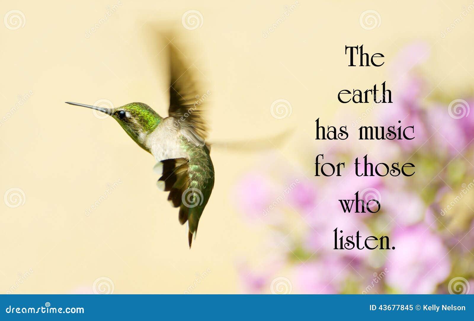 inspirational quote stock photo image 43677845