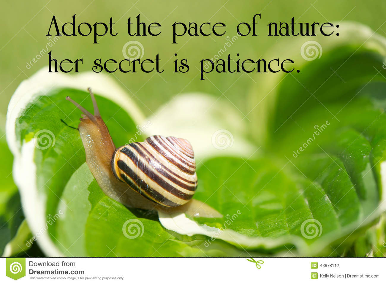what is nature by emerson about