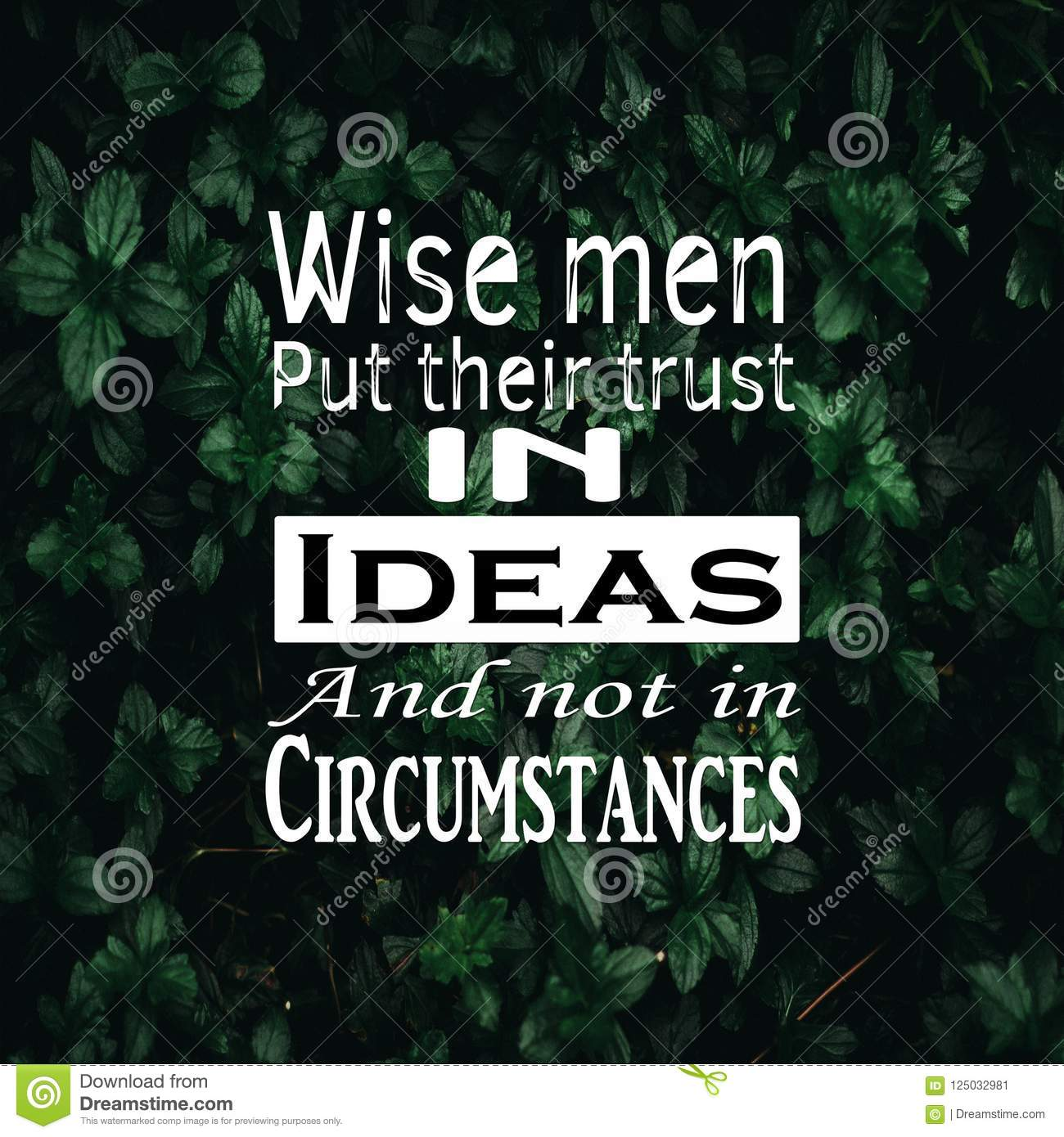 Inspirational Quotes Wise Men Put Their Trust In Ideas And