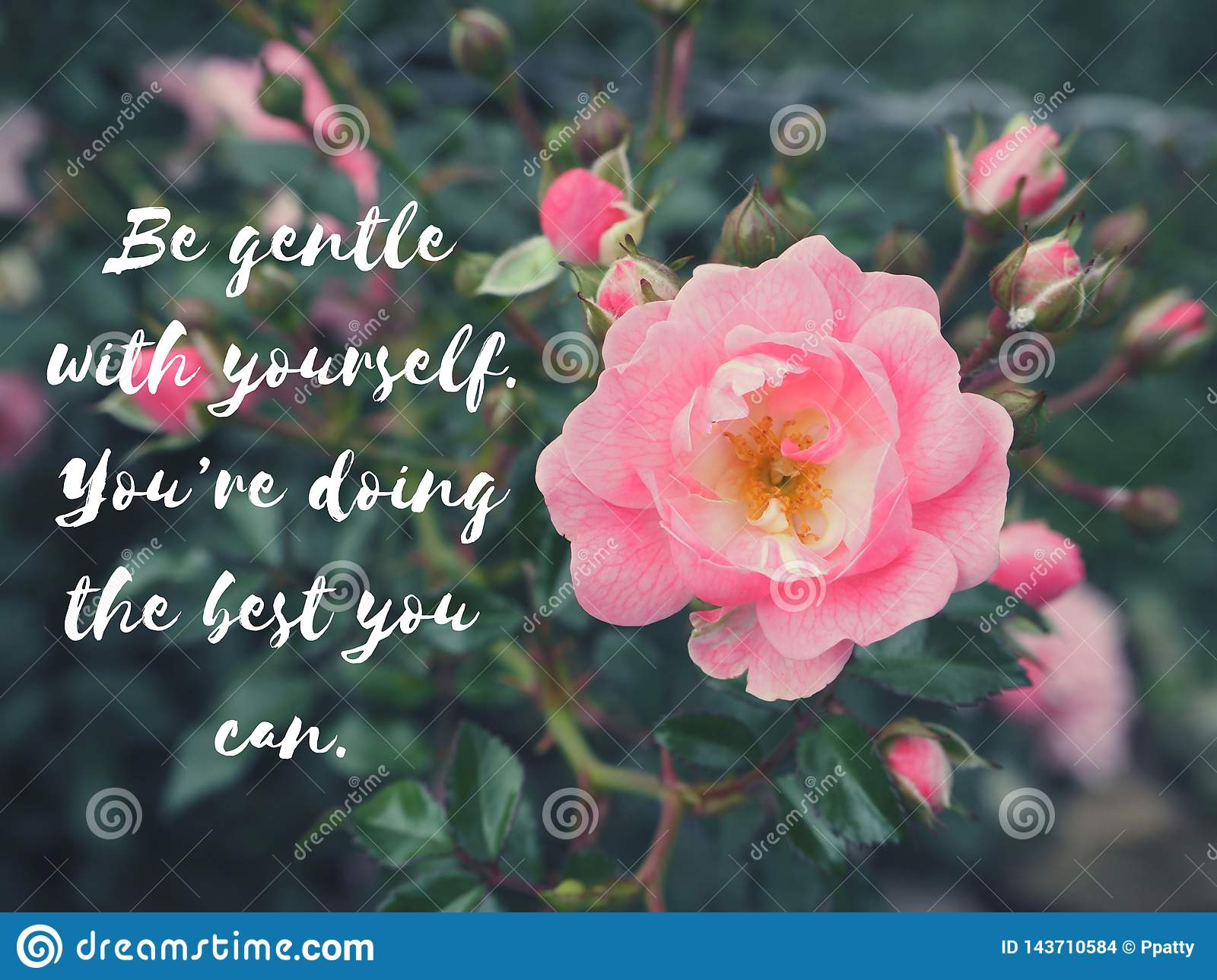 inspire motivation life quote on flowers background stock photo