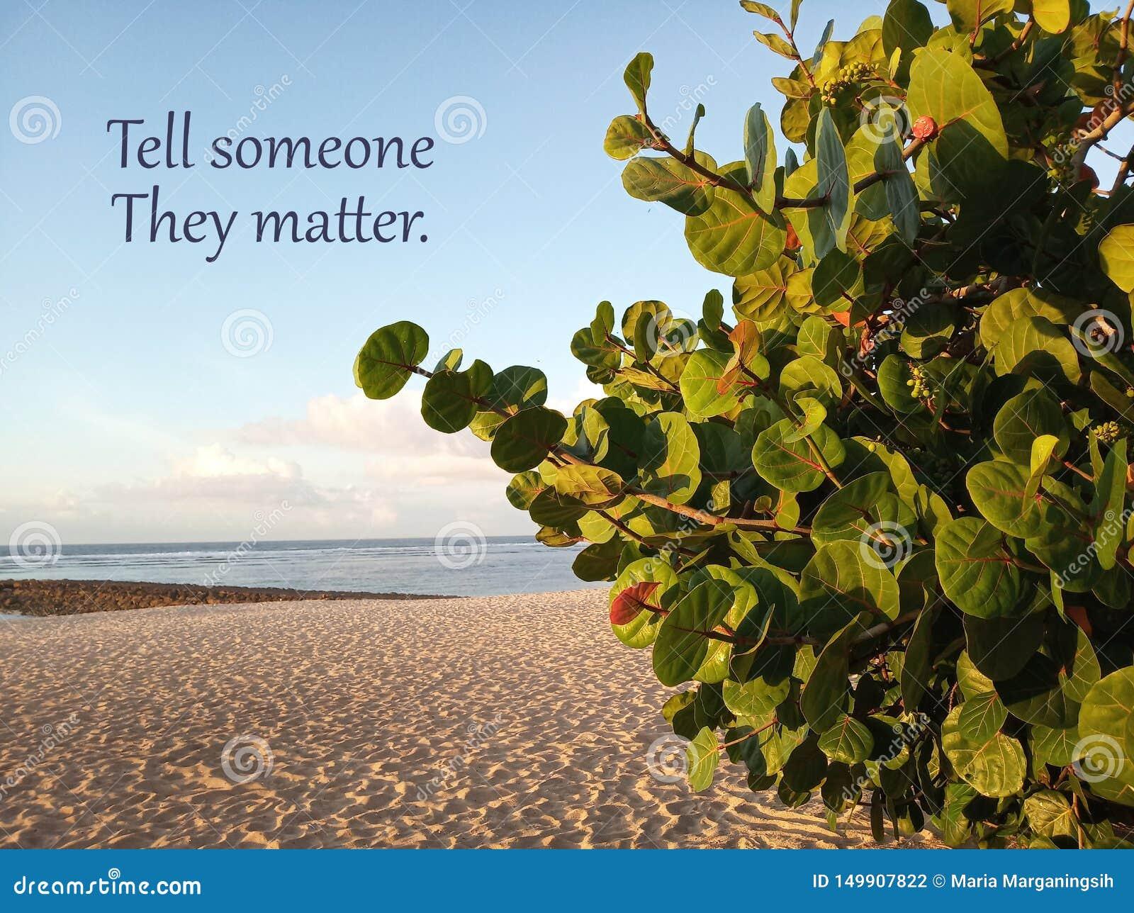 Inspirierend Motivzitat erklären jemand, das sie von Bedeutung sind Mit weißem sandigem Strand unter sauberer Landschaft des blau