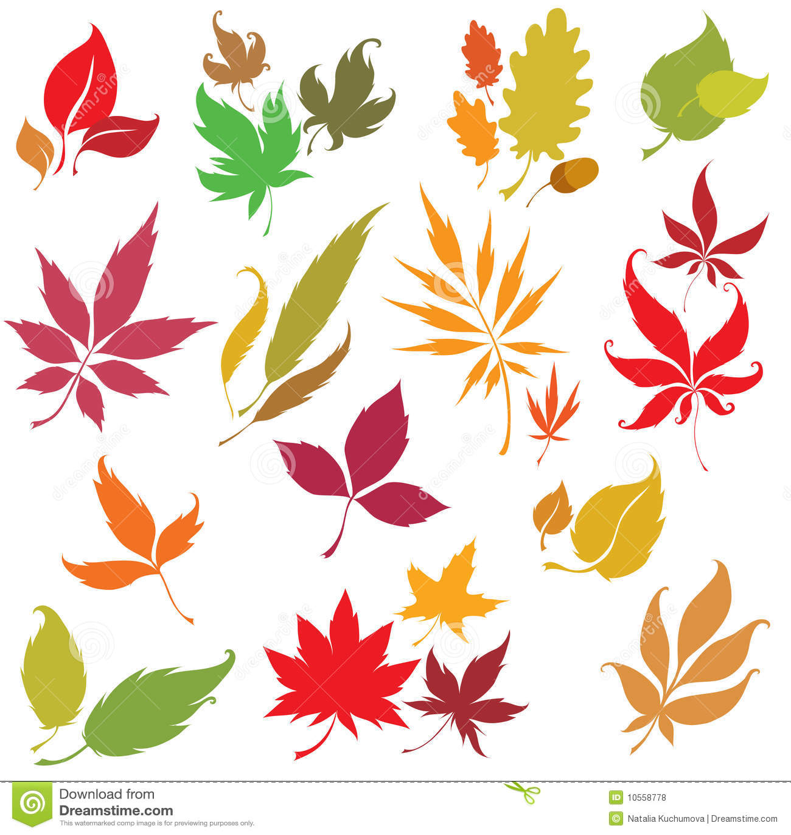 Inställda leaves för höstdesignelement