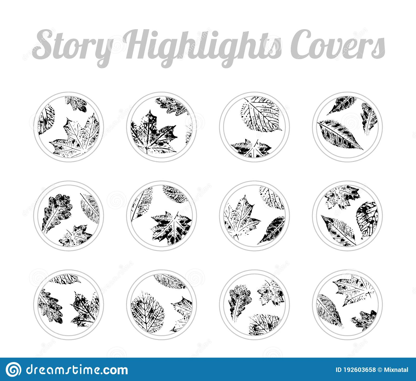 Set Of Story Highlights Covers Icons Set Of Autumn Leaves Imprints Black And White Design For Fall Season Bundle Of Templates F Stock Vector Illustration Of Forest Birch 192603658