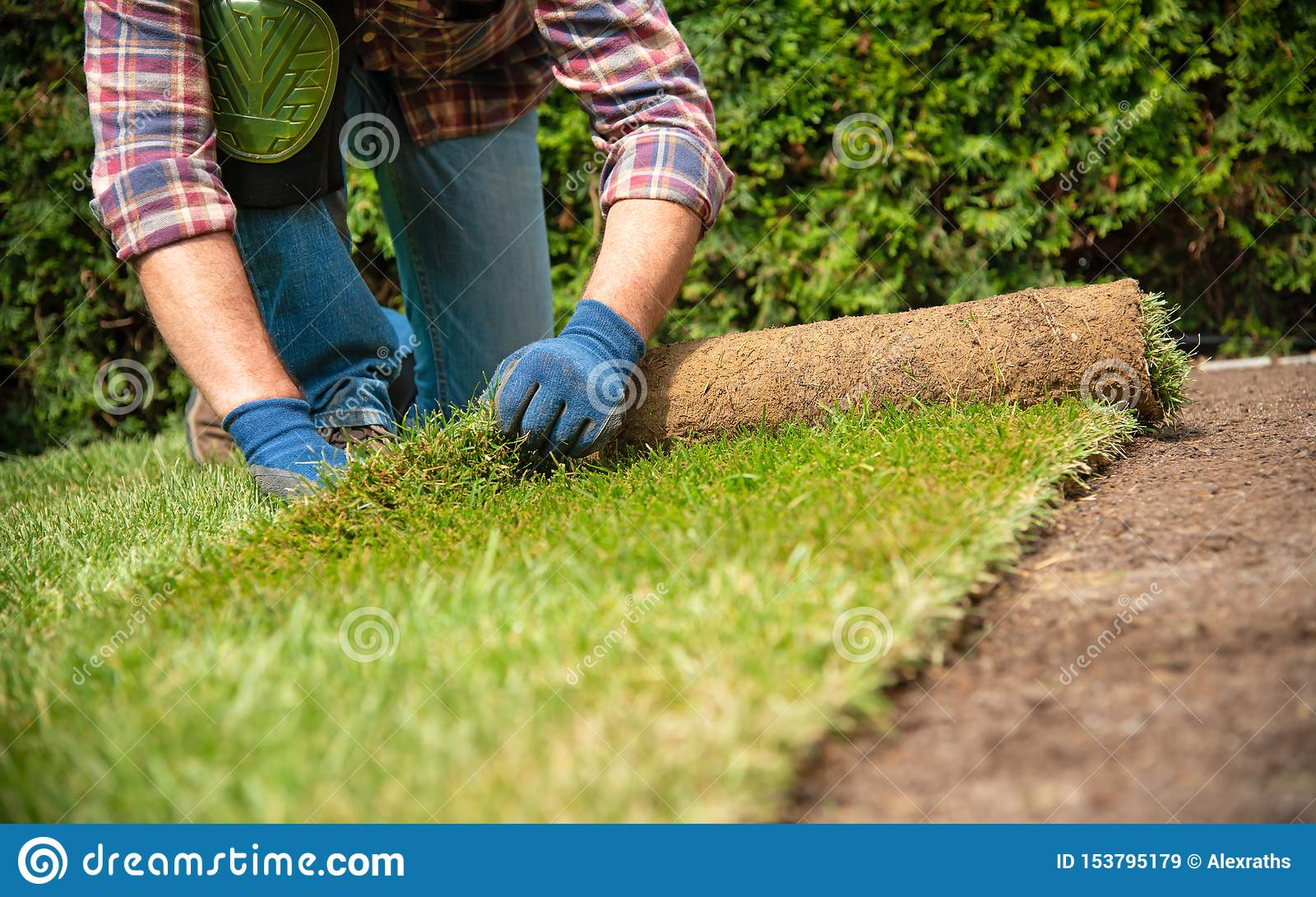 Instalować muraw rolki w ogródzie