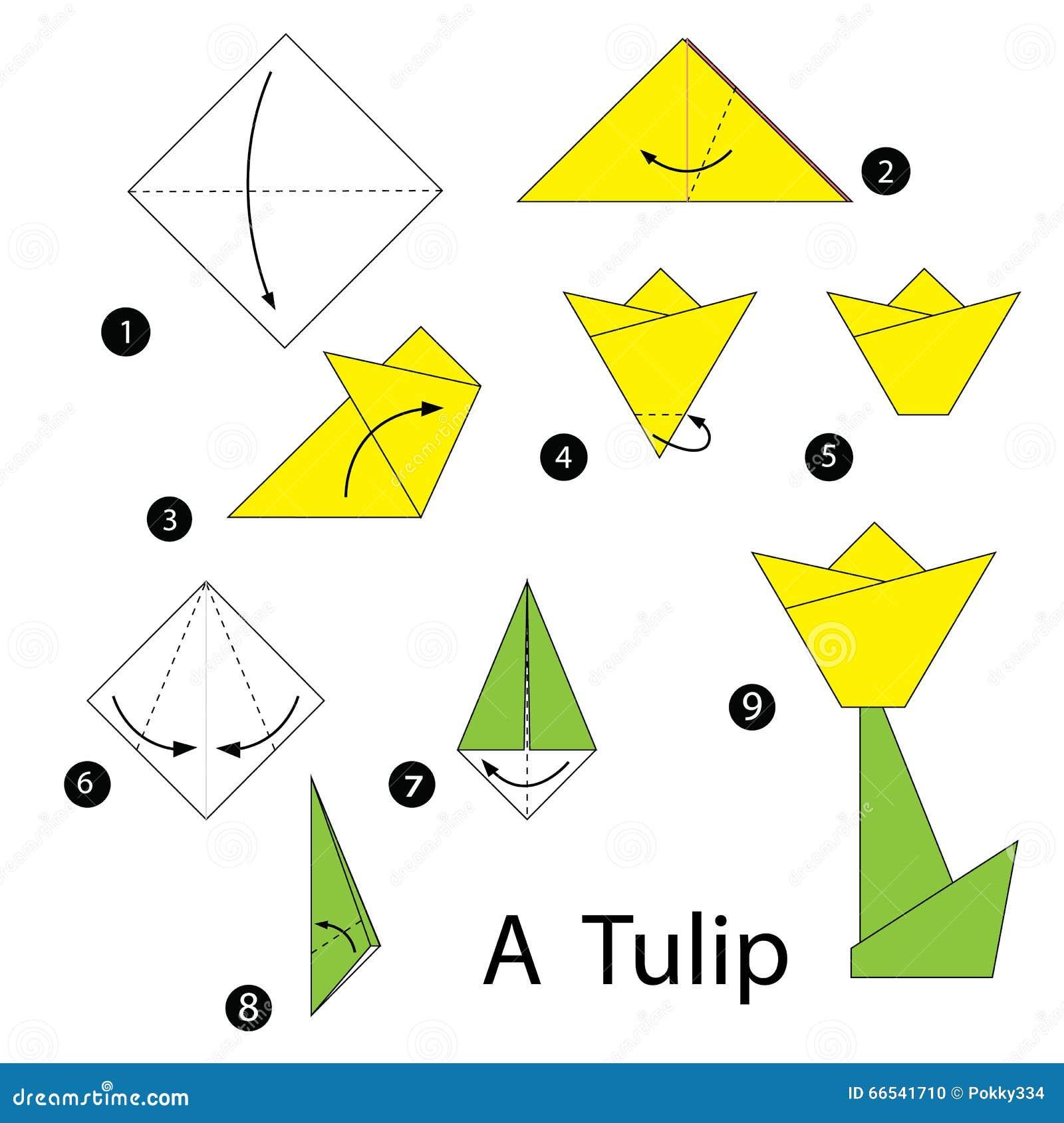 Instrucciones Paso A Paso Cómo Hacer El Tulipán De La Papiroflexia