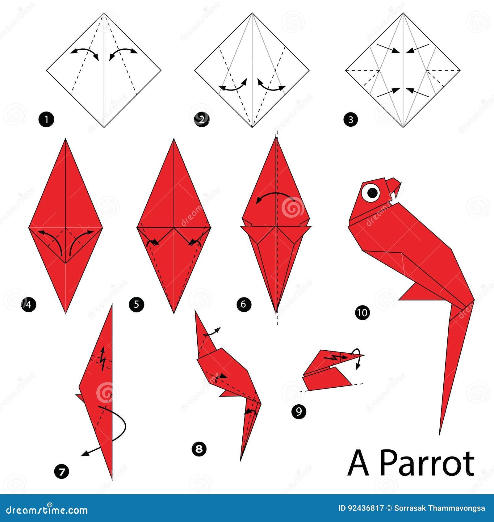 Instrucciones paso a paso c mo hacer papiroflexia un loro - Como hacer un estor enrollable paso a paso ...