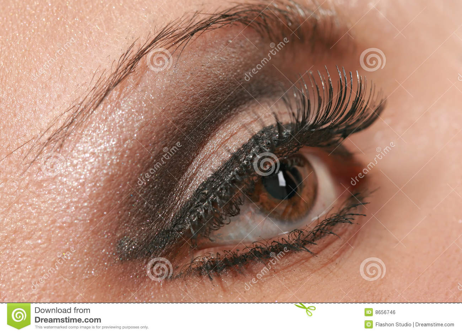 Instruction-macro femelle d oeil