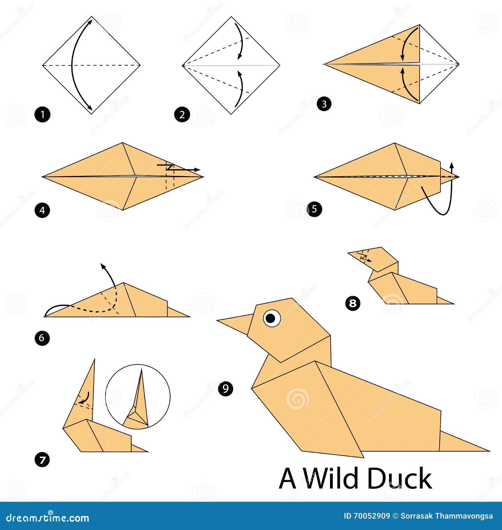 Instructions tape par tape comment faire origami un canard sauvage illustration de vecteur - Comment cuisiner le canard sauvage ...