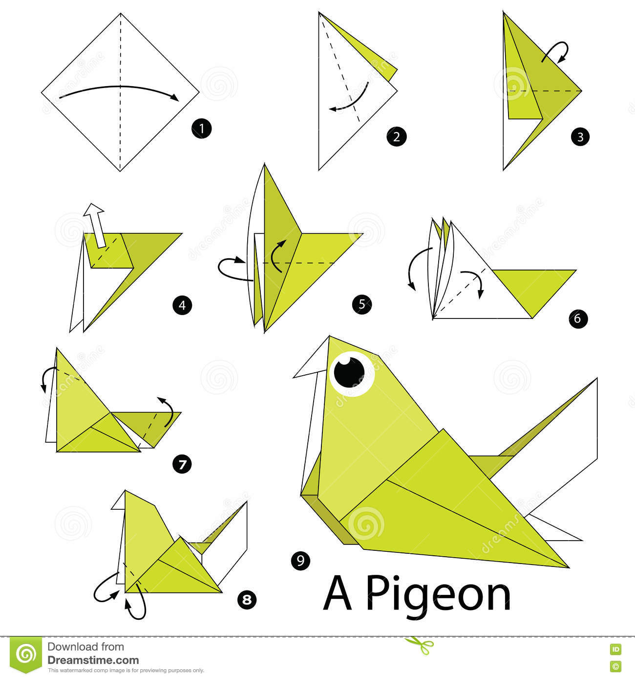 Instructions tape par tape comment faire origami un pigeon illustration de vecteur image - Comment faire fuir les pigeons ...