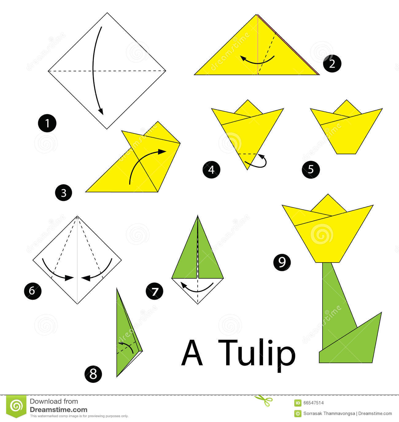 instructions tape par tape comment faire la tulipe d 39 origami illustration de vecteur image. Black Bedroom Furniture Sets. Home Design Ideas