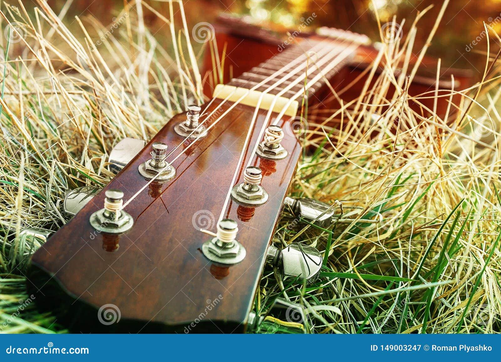 Instrumento musical atado en naturaleza Canciones del juego