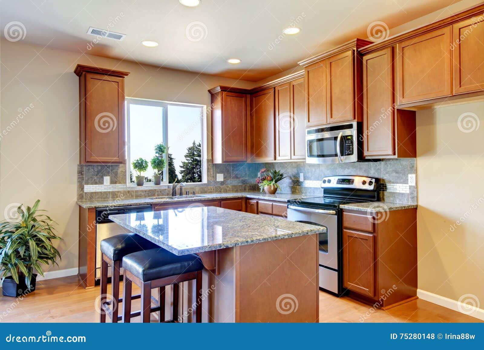 int rieur am ricain typique de cuisine avec la combinaison en bois de stockage photo stock. Black Bedroom Furniture Sets. Home Design Ideas