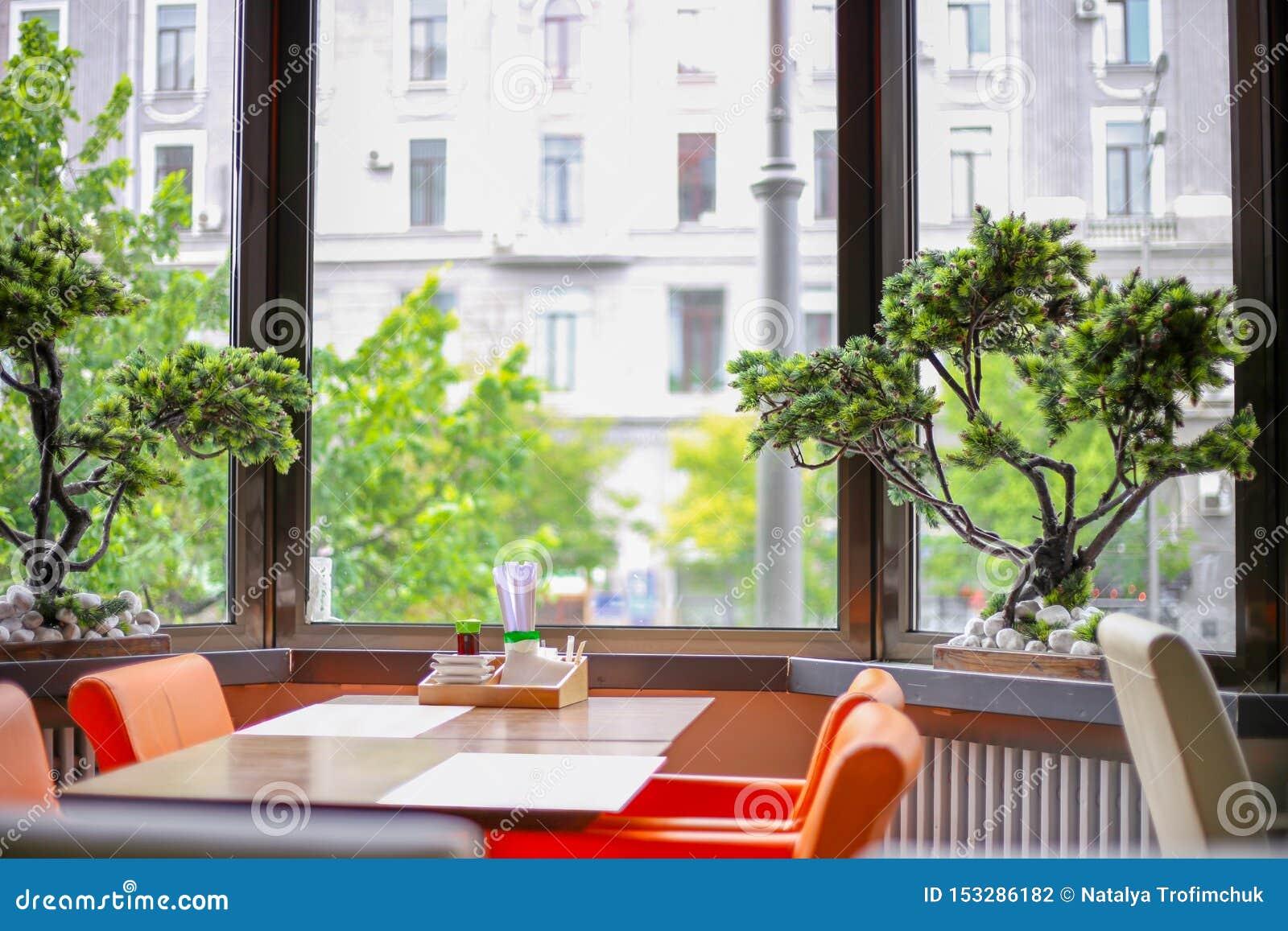 Intérieur avec de beaux bonsaïs Restaurant avec les fenêtres panoramiques