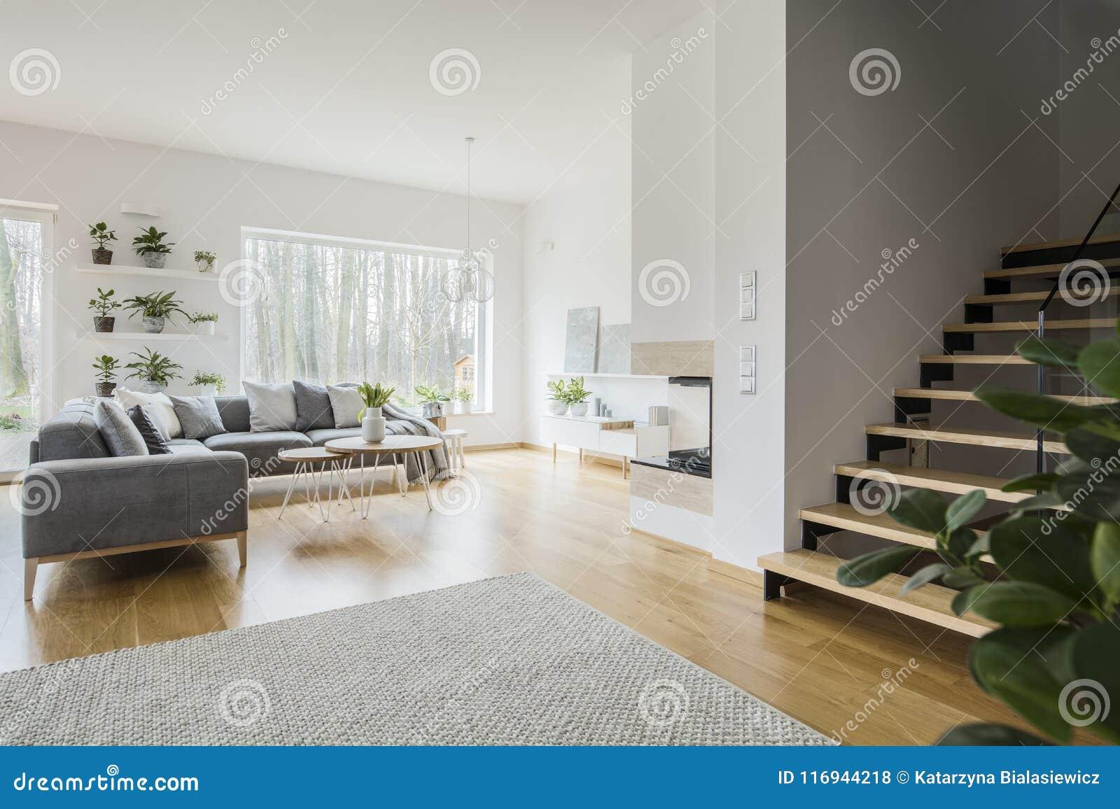 Intérieur blanc de salon avec le divan faisant le coin gris, vert frais p