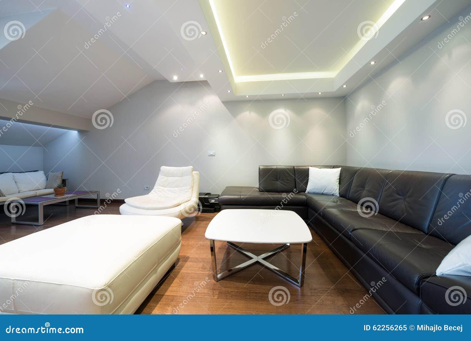 Intérieur D\'un Salon De Luxe Spacieux Avec Le Plafond Coloré Image ...