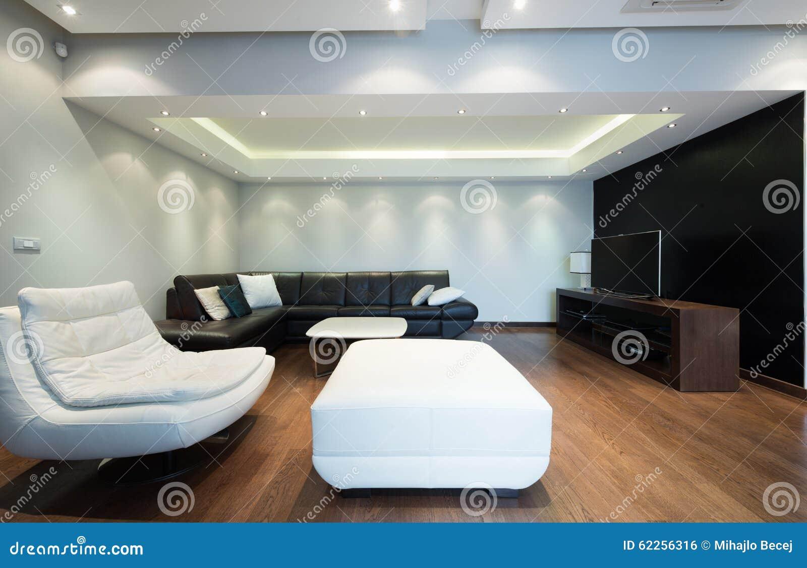 Int rieur d 39 un salon de luxe spacieux avec le plafond color photo stock image 62256316 for Un salon de luxe