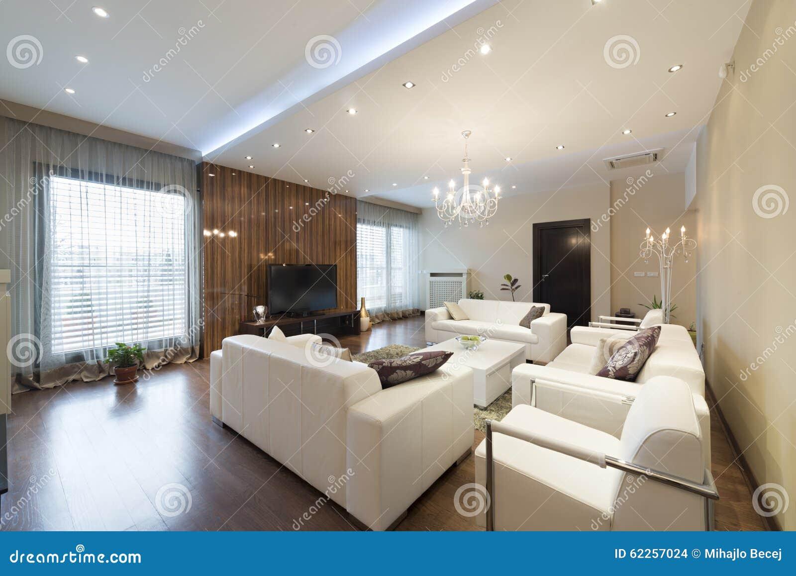 Int rieur d 39 un salon spacieux en appartement de luxe photo stock image 62257024 for Un salon de luxe