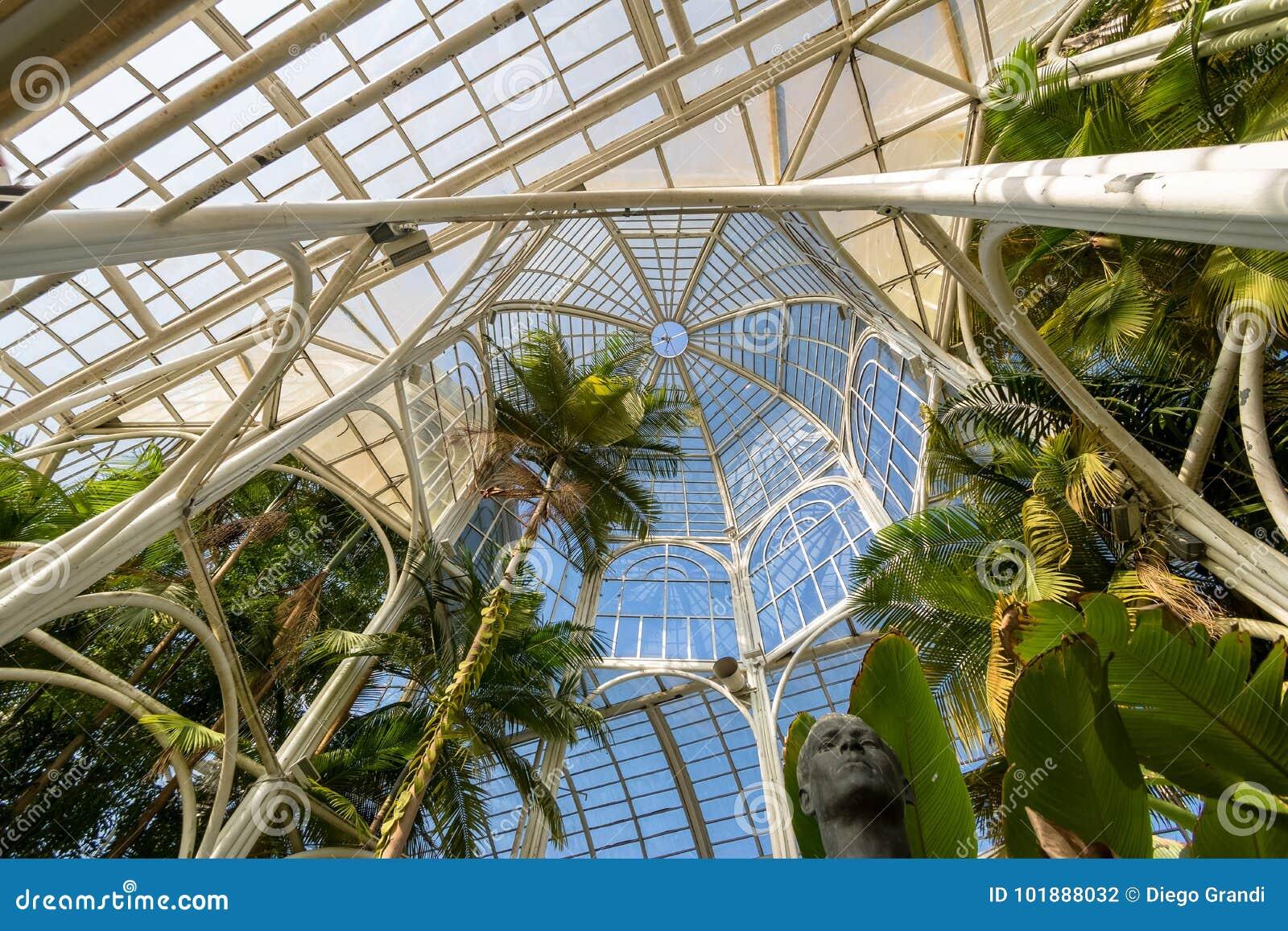 Intérieur De Serre Chaude Au Jardin Botanique De Curitiba ...