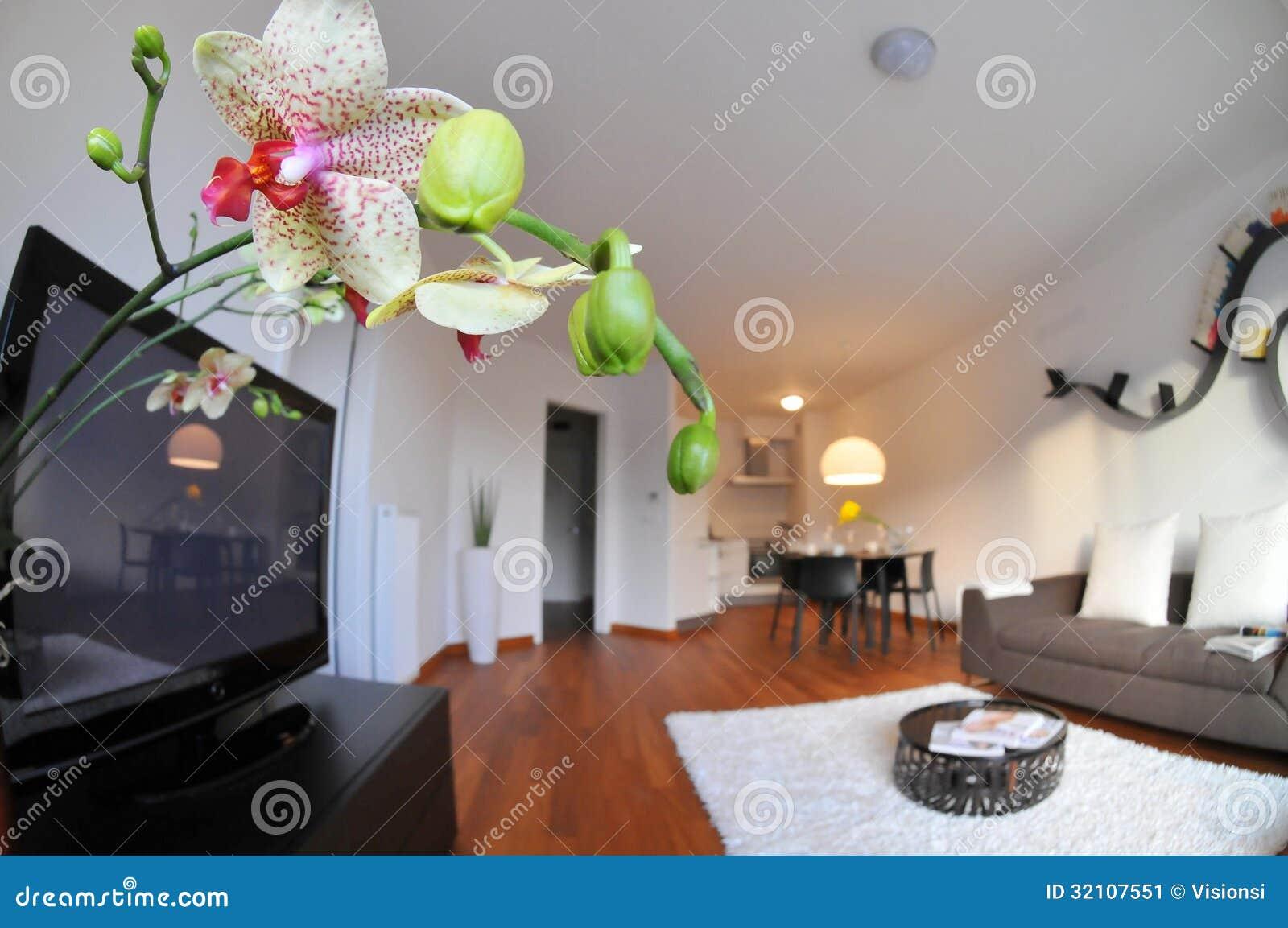 Intérieur moderne de salon avec la cuisine