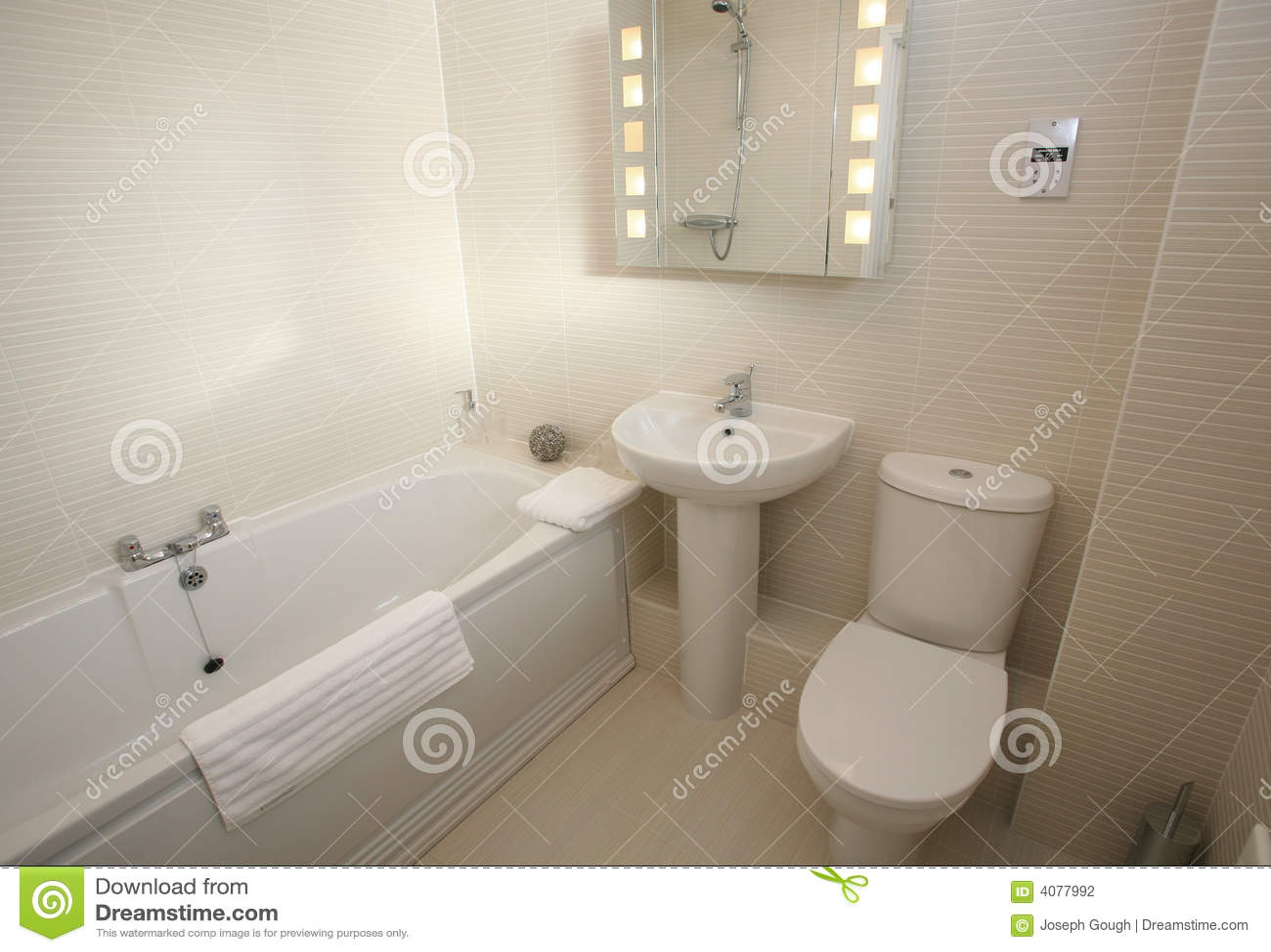 Intérieur moderne de suite de salle de bains
