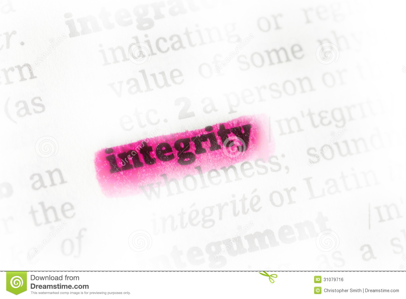 Definition Academic Integrity Essay