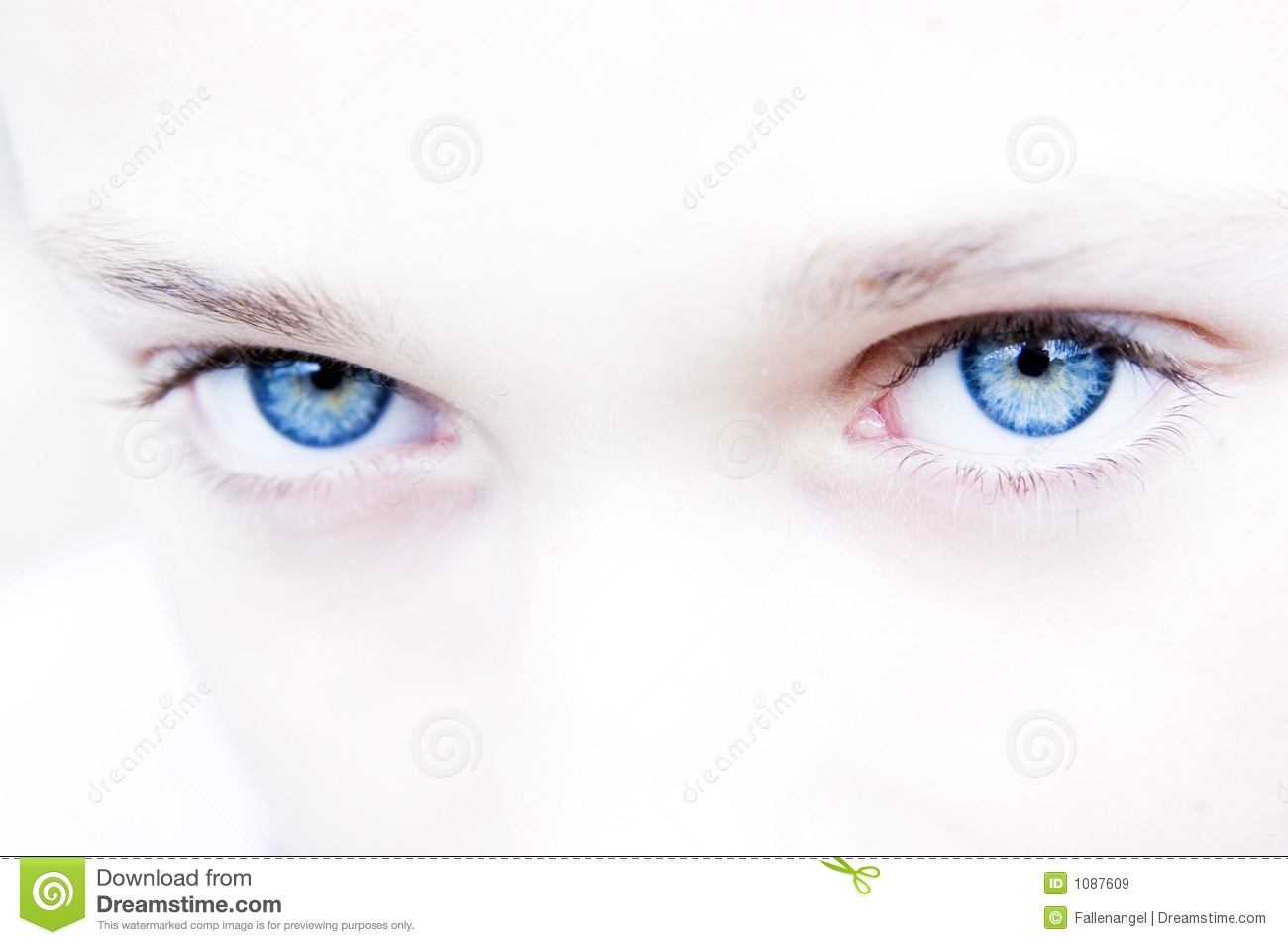 Intense Blue Eyes Royalty Free Stock Images - Image: 1087609
