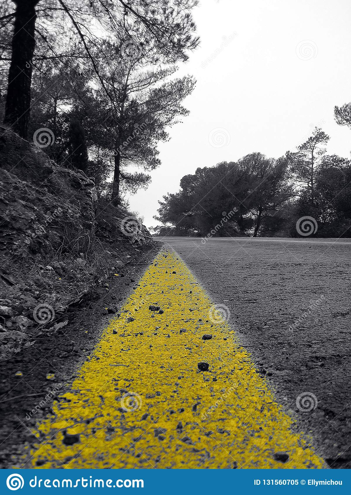 Intense yellow line on a forest road